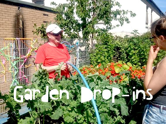 garden drop ins