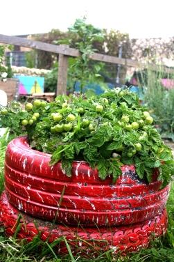 NEA garden tyre planter